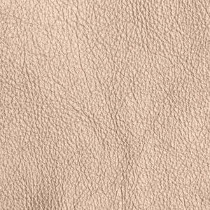 Metallic Champagne Genuine African Leather
