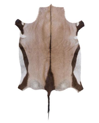 Gemsbok (Oryx) African Game Skin